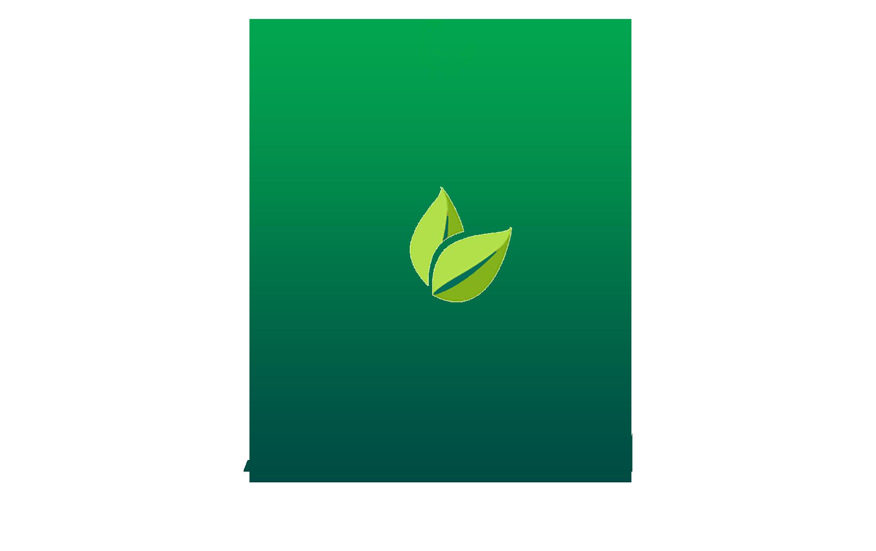 logo pudina(1)
